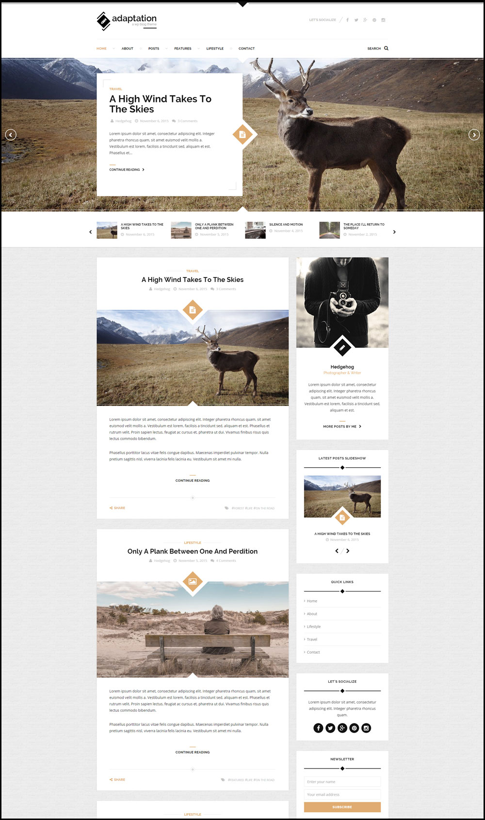 Adaptation – A Responsive Travel Theme For WordPress