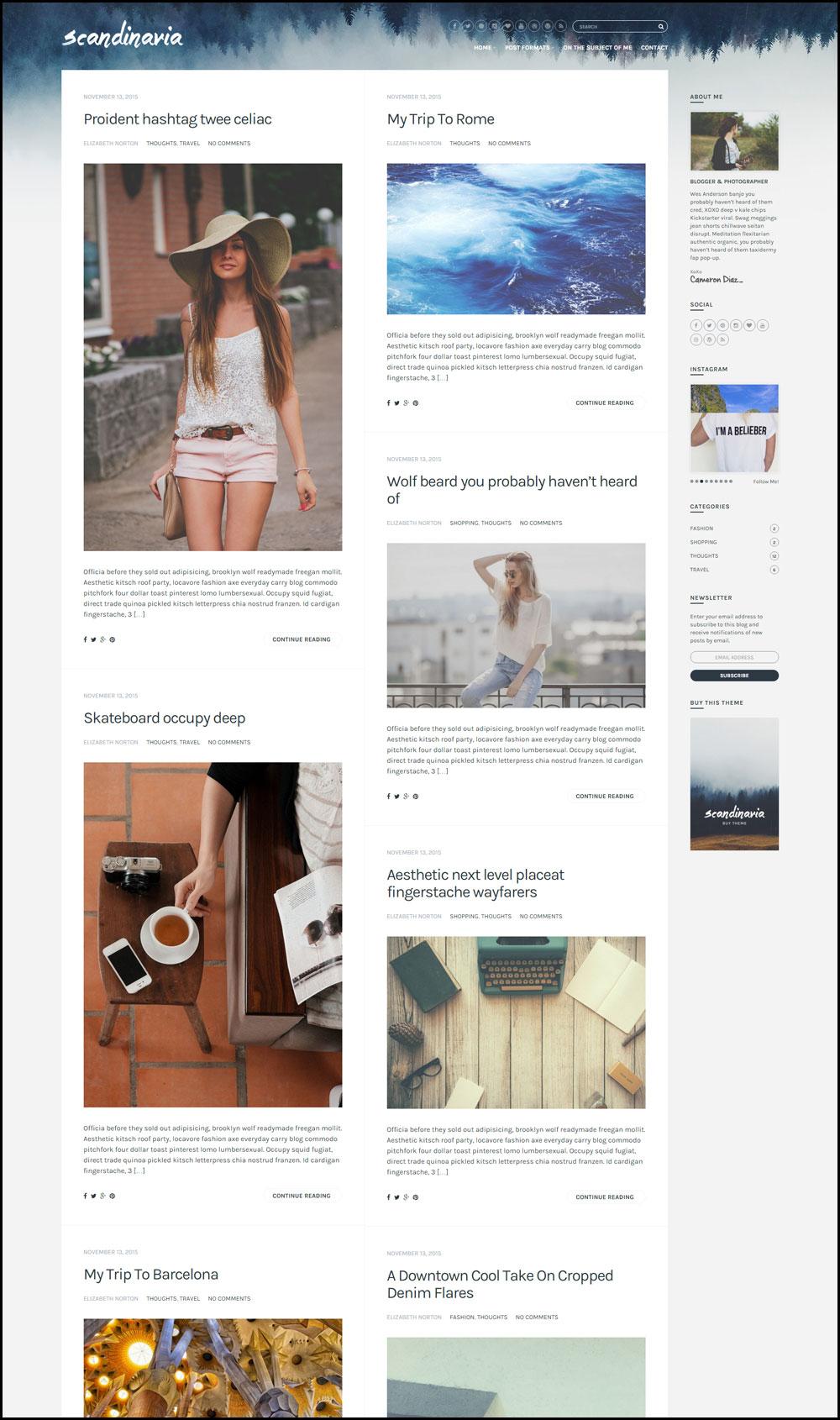 Scandinavia – A Stylish WordPess Theme For Successful Travel Blog