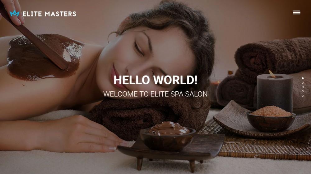 EliteMasters - Stylish & Responsive Bussiness WordPress Theme