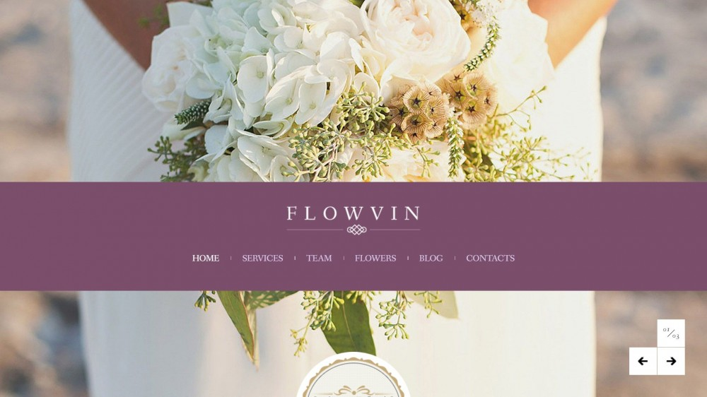 FlowVin