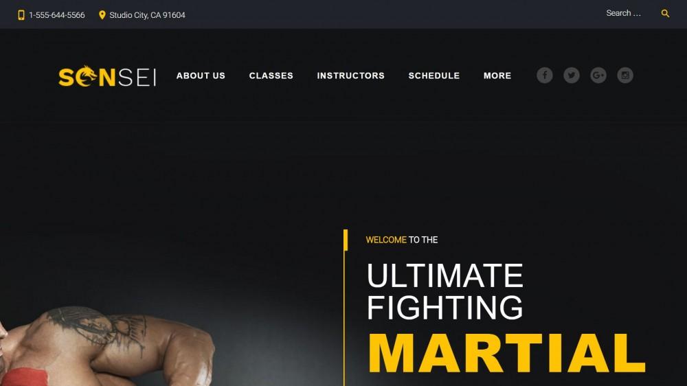 Sensei - MMA WordPress Theme