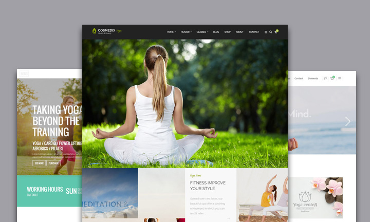 20+ Beautiful WordPress themes for Yoga, Pilates or Dance Web Site