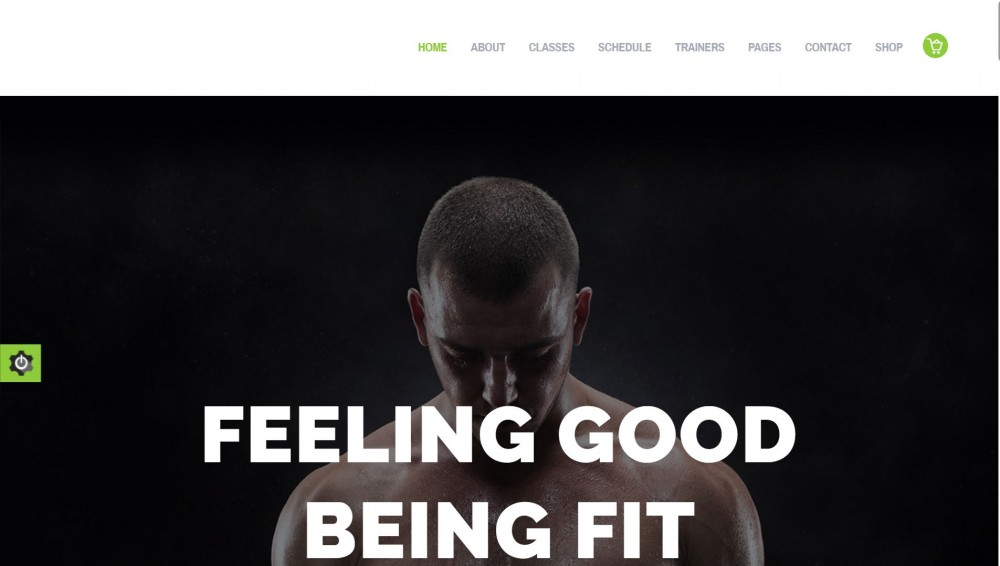 Fit and Fab - Fitness, Aerobic, & Gym WordPress Theme
