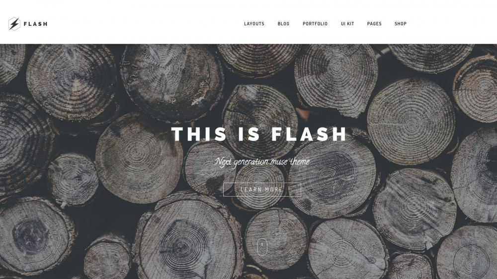 25 best creative business portfolio adobe muse templates multi page or one page adobe muse template designed with attention to details and style this template is compatible with 11 demos 50 pages and video maxwellsz