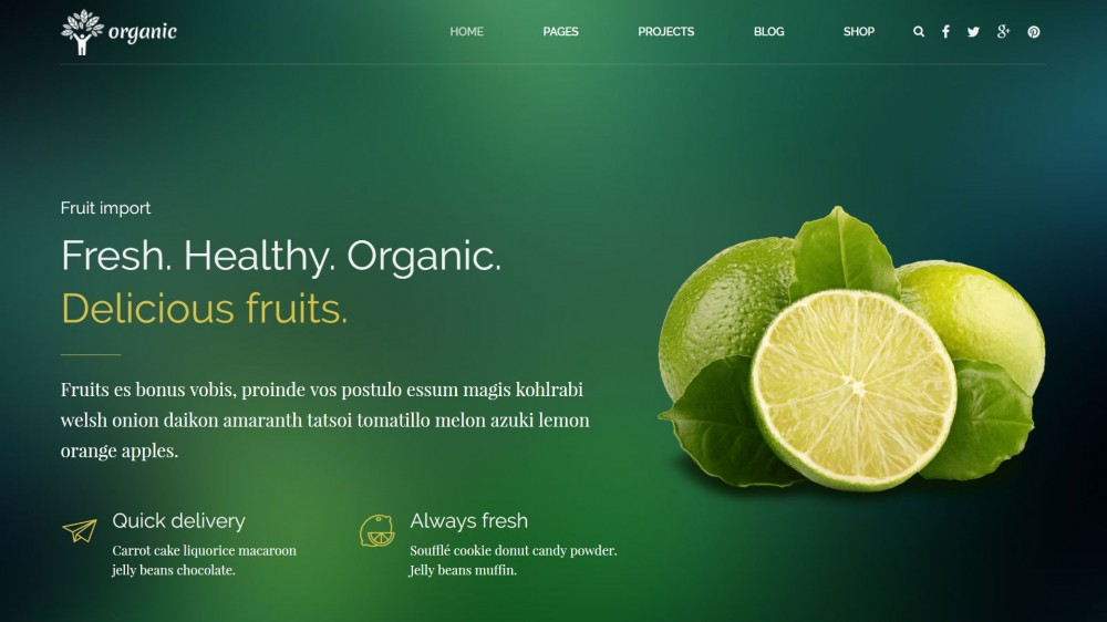 WordPress Themes for Organic, Healthy Food, Eco Products & Agro-Tourism Shops
