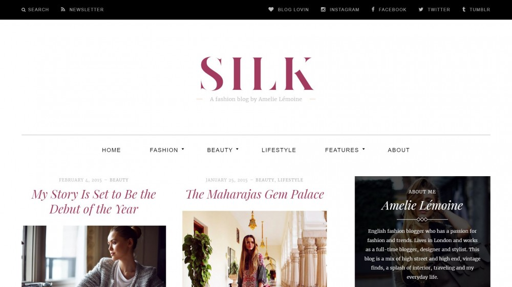 Take A Look To Silk Super Stylish Free WordPress Theme
