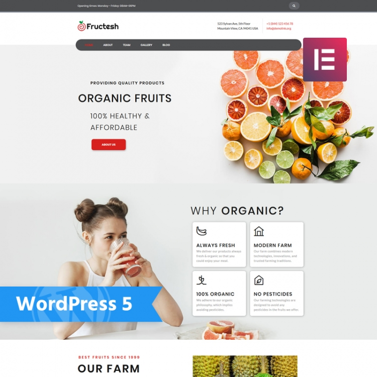 20 Wordpress Themes For An Organic Food Shop Healthy Food Blog Agricultural Business Agro Tourism